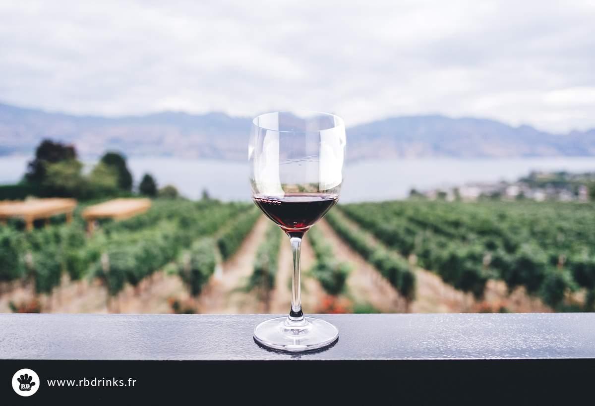 Toutes les tendances vin de l'année 2017 | RBDRINKS®