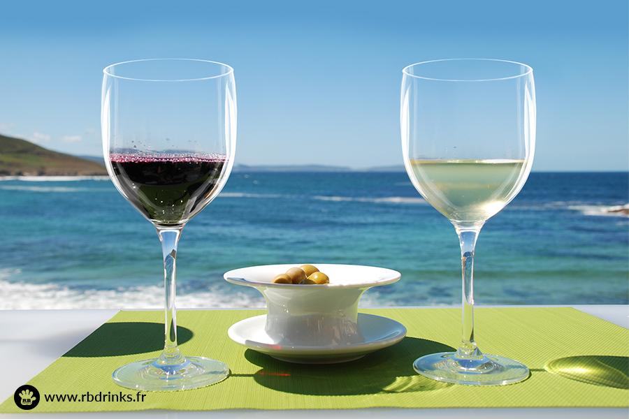 Tout sur le vin naturel
