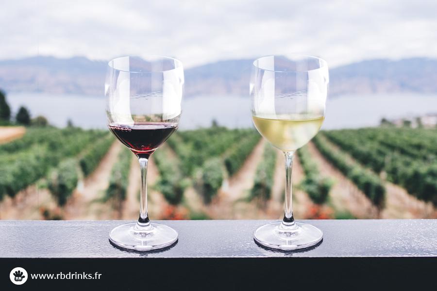 Les différences entre le vin blanc et le vin rouge